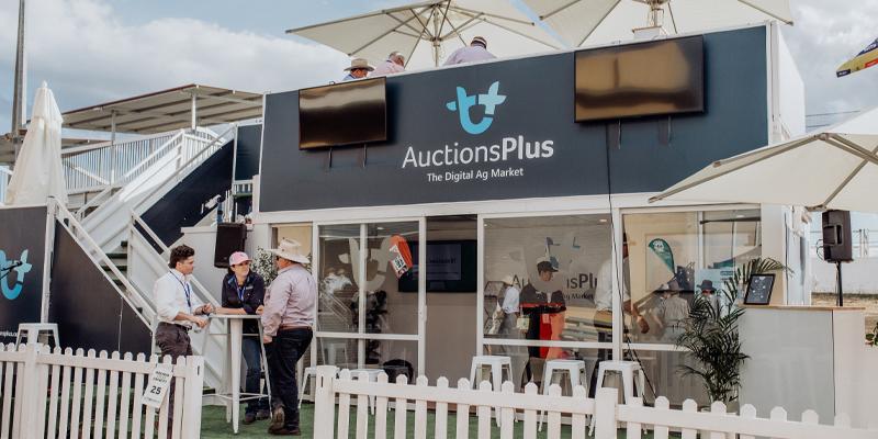 Auctions Plus Beef Week 2021
